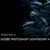 What's New in Lightroom 4