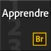 Apprendre Bridge CS6