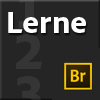 Lerne Bridge CS6
