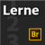 Lerne Bridge CS6 - Show Logo