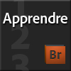 Apprendre Adobe Bridge CS5