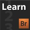 Learn Adobe Bridge CS4