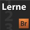 Lerne Adobe Bridge CS4